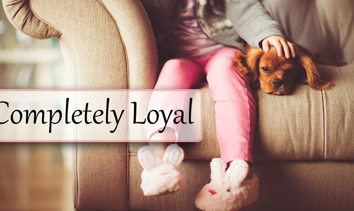 Completely Loyal
